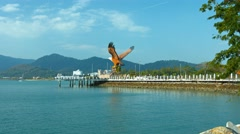 Enormous Eagle Statue at the Port of Langkawi Malaysia Stock Footage