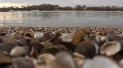 Shelfish shells at Danube river at sunset Stock Footage