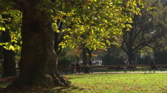 Pedestrians walking In the park Stock Footage