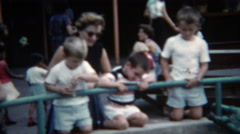 1955: Family watching black bear below at the local zoo. - stock footage