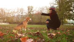 Slow motion autumnal footage: lady in the hat tames her beagle Stock Footage