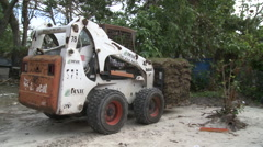 Forklift delivers sod Stock Footage