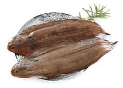 two sole fishes - stock photo