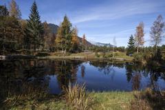 Moorland lake KematsriedMoos autumn Oberjoch Allgau Bavaria Germany Europe - stock photo