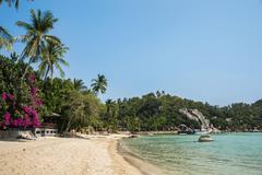 Sandy beach turquoise sea Koh Tao Gulf of Thailand Thailand Asia Stock Photos
