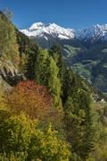 Autumn scenery in the mountains Plattenspitzen behind near Merano Trentino - stock photo