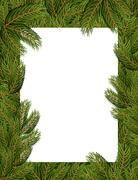 Stock Illustration of Frame spruce branch. Tree frame for text. White sheet in leaves of tree.