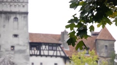 Leafy branch sways in front of an old castle 06 - stock footage