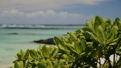 Beautiful beaches in paradise, Mauritius Stock Footage