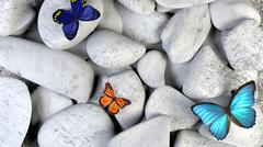 Butterfly and stones as background. A light blue butterfly in a zen garden wi - stock illustration