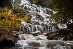 autumn tree yellow leaves silky smooth waterfall - stock photo