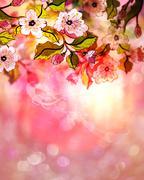 Dreamy Sakura Stock Illustration
