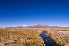 Small stream in the Andes. Park Sajama, Bolivia - stock photo