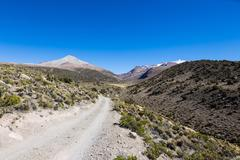 Small path in the Andes. Park Sajama, Bolivia - stock photo