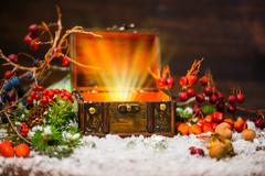Christmas winter fairy with miracle in opened chest. Winter background of mys Stock Photos