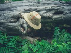 Safari hat on fallen tree in the forest - stock photo
