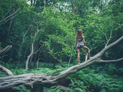 Barefoot young woman standing on fallen tree Stock Photos