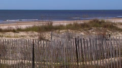 Sand dunes, ducks, pelicans, erosion fence and Gulf of Mexico Stock Footage