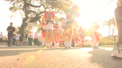 Masked Parade Band 2 Stock Footage