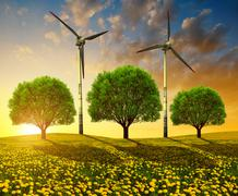 Trees with wind turbines on meadow at sunset. - stock photo