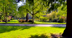 4K Beautiful City Public Park in Spring, Green Grass, Flowers and Trees Stock Footage