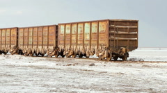 Old rusty train wagons with stalactites of salt Stock Footage