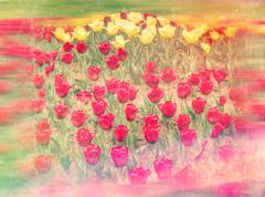 Lots of Red Tulips - stock illustration