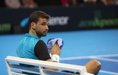 Sofia, Bulgaria - November 28, 2015: Sofia, Bulgaria - Grigor Dimitrov defeat - stock photo
