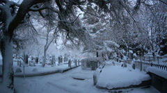 Snow falling off tree branches Reykjavik Iceland cemetery in winter Stock Footage