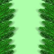 Green Fir Branches Stock Illustration