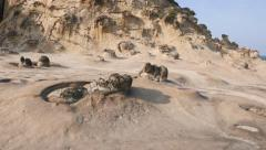 Otherworldly look of sea shore at Yehliu Geological Park, odd stone formation - stock footage