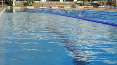 Swimmers Training In Olympic Size Swimming Pool In Outdoor Gym Stock Footage