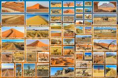 African desert collage - stock photo