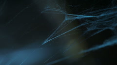 Blue light spiderweb close up Stock Footage
