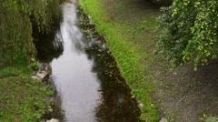 Pisa Warminska river in Barczewo, Poland. Stock Footage