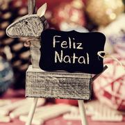 reindeer and text feliz natal, merry christmas in portuguese - stock photo