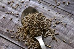 Spoon with anise seeds Stock Photos