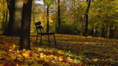 Stock Video Footage of Beautiful park in the autumnal season, steadycam shot, slow motion shot at 240fp