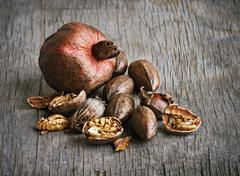 pomegranate and pecan nuts - stock photo