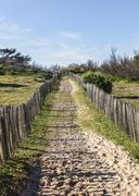 Footpath on the Atlantic Dune in Brittany - stock photo