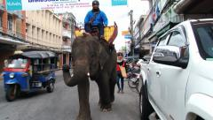 Man rides elephant by the street of Surin, Thailand. Stock Footage