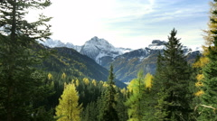 Great outdoors nature background with coniferous forest in mountain wilderness Stock Footage