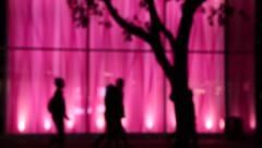 Silhouettes, people walking, night, pink background Stock Footage