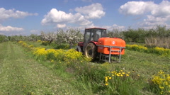 Agriculture tractor spray fertilize apple orchard industrial garden in spring. Stock Footage