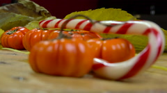 Jack be little (small pumpkin) and candy cane - focus change Stock Footage