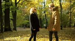 Stock Video Footage of Couple having an argument in the autumnal park