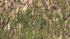 Landscape in Teide National Park in Tenerife Stock Footage