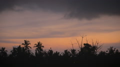 Beautiful sunrise or sunset overlooking the tropical jungle Stock Footage