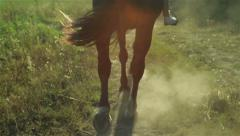 Back view of a running horse. Close up Stock Footage