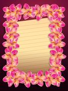 Stock Illustration of Pink plumeria flowers frame with paper